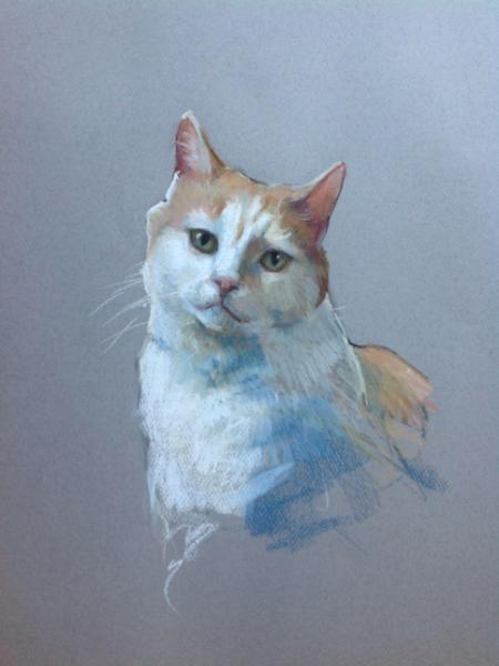 """Cat 12x16"""" pastel"""