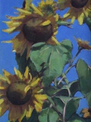 "Sunflowers 18x36"" oil sold"