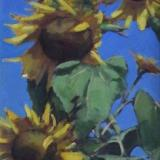 """Sunflowers 18x36"""" oil sold"""