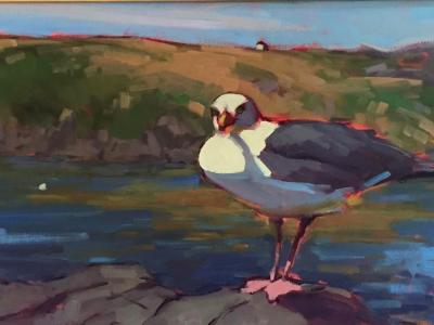 "Gull and Manana 12x36"" oil"