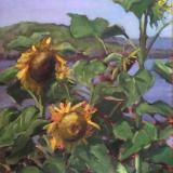 """Sunflowers at the Barnacle 18x24"""" sold"""