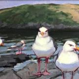 "Manana Gulls, Cloudy day 12x24"" oil sold"