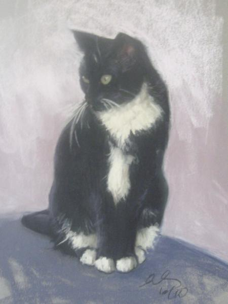 "Meow 12x16"" pastel"