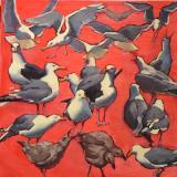 """Monhegan Gulls 30x30"""""""